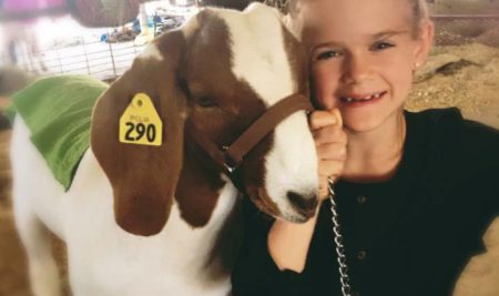 WCS Students Excel at Parker Co. Livestock Show